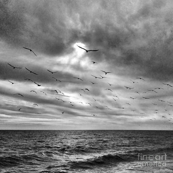Photograph - The Sea And The Sky by Chris Scroggins