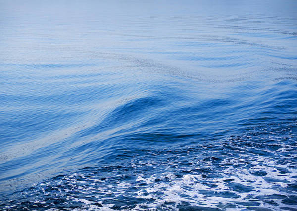 Photograph - The Sea Carries All Away by Brenda Kean