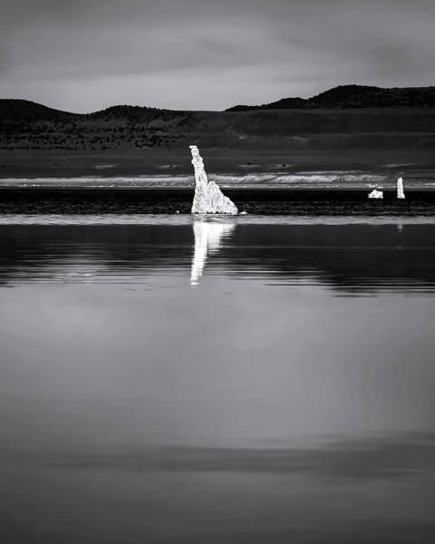 Photograph - The Secret Bw by Denise Dube