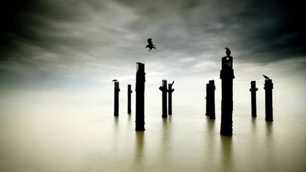 Post Wall Art - Photograph - The Sentinels by Paulo Dias
