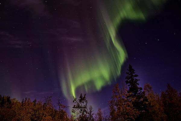 Photograph - The September Aurora Fairbanks Alaska by Michael Rogers