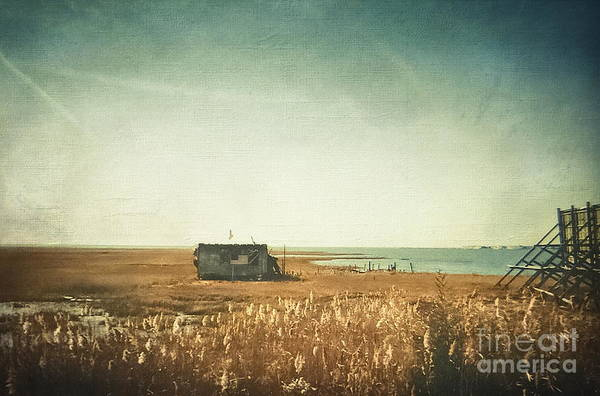 Kammerer Wall Art - Photograph - The Shack - Lbi by Colleen Kammerer