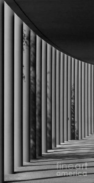 Photograph - The Shadows And Pillars  Black And White by Mark Dodd