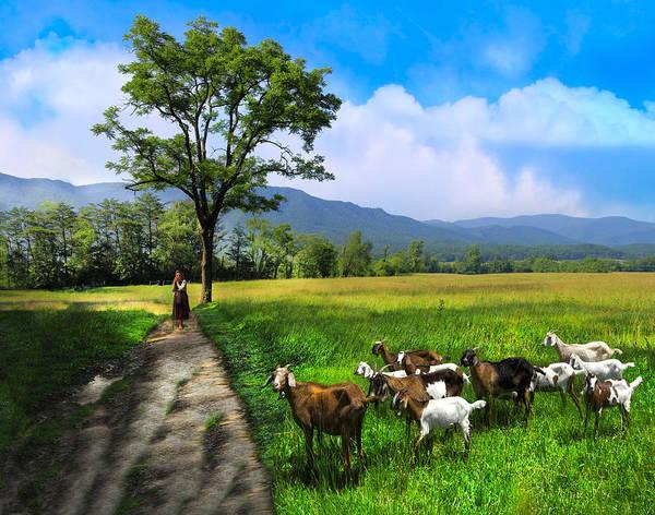 Photograph - The Shepherdess by Debra and Dave Vanderlaan