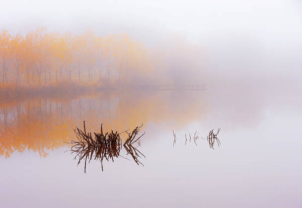 Wall Art - Photograph - The Silence Of Autumn by Julien Oncete