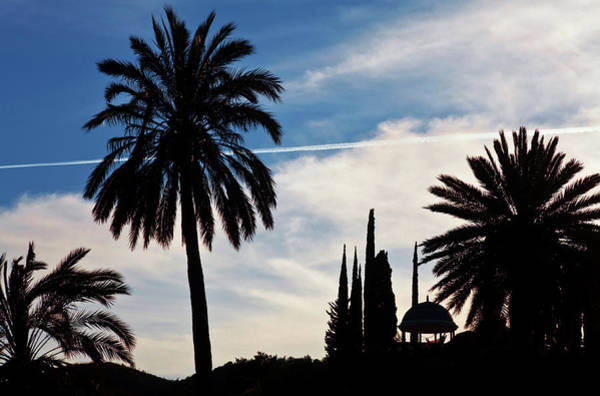 Cypress Gardens Photograph - The Silhouetted Temple,botanical Garden by Panoramic Images