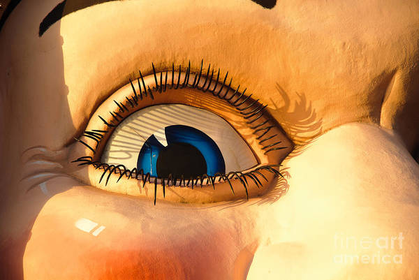 Photograph - The Smiling Eye Of Happiness by David Hill