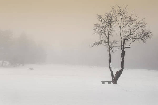 Photograph - The Solitude Of Winter by Bill Wakeley