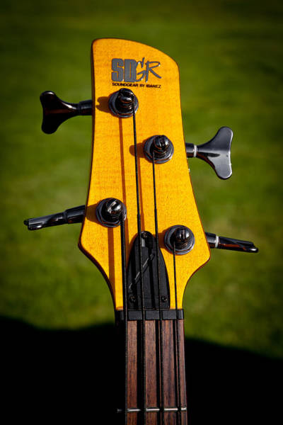 Photograph - The Soundgear Guitar By Ibanez by David Patterson