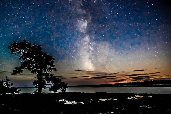Photograph - The Spectacular Milky Way by Tom and Pat Cory