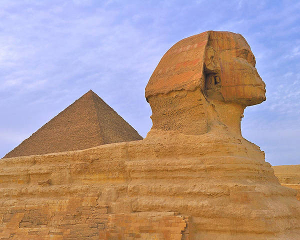 Photograph - The Sphinx by Tony Beck
