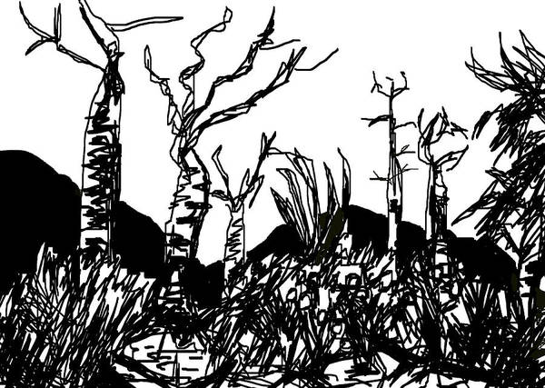 Digital Art - The Madagascan Spiny Forest by Paul Sutcliffe