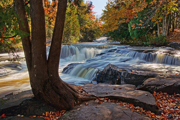 Photograph - The Splendor Of Bond Falls by Leda Robertson