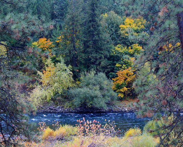 Photograph - The Spokane River In The Fall Colors by Ben Upham III