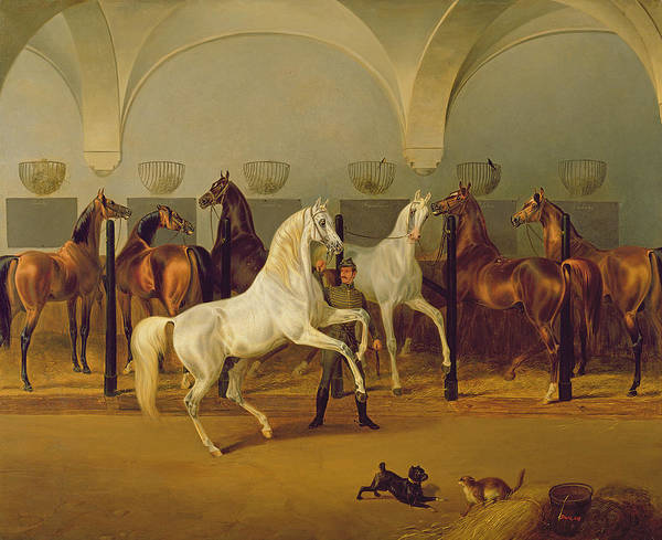 Scared Painting - The Stables At Babolna by Otto Stotz