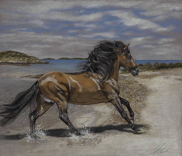 Painting - The Stallion And The Exumas by Terry Kirkland Cook