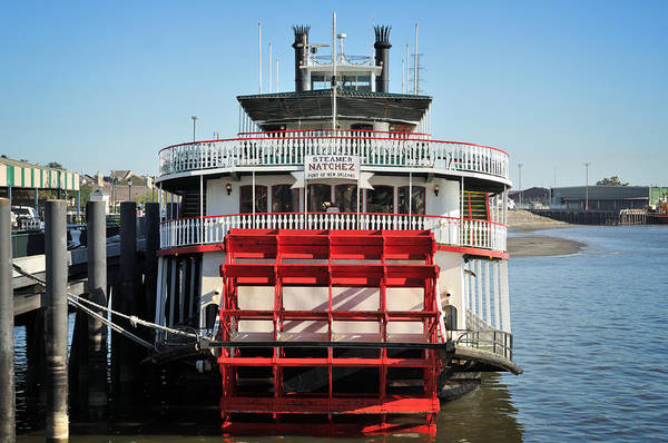 Photograph - The Steamboat Natchez-nola by Bradford Martin