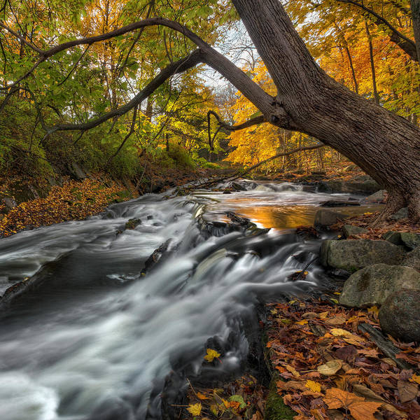 Autumn In New England Photograph - The Still River Square by Bill Wakeley