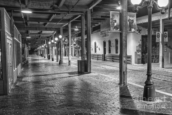 Wall Art - Photograph - The Stockyards Station by Paul Quinn