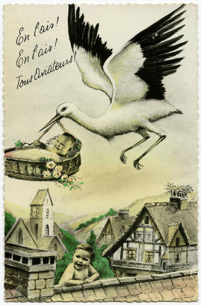 Wall Art - Drawing - The Stork Says 'en L'air !'  (get by Mary Evans Picture Library