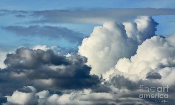 Photograph - The Storm Arrives by Susan Wiedmann