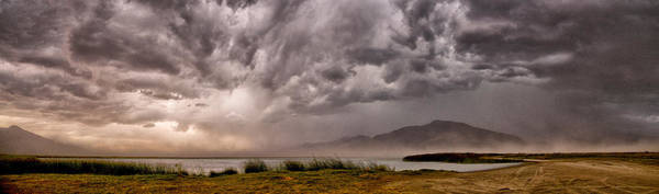 Photograph - The Storm by Cat Connor