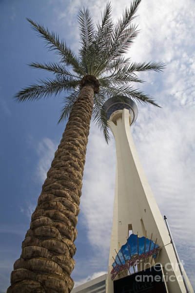 Photograph - The Stratosphere by Jim West