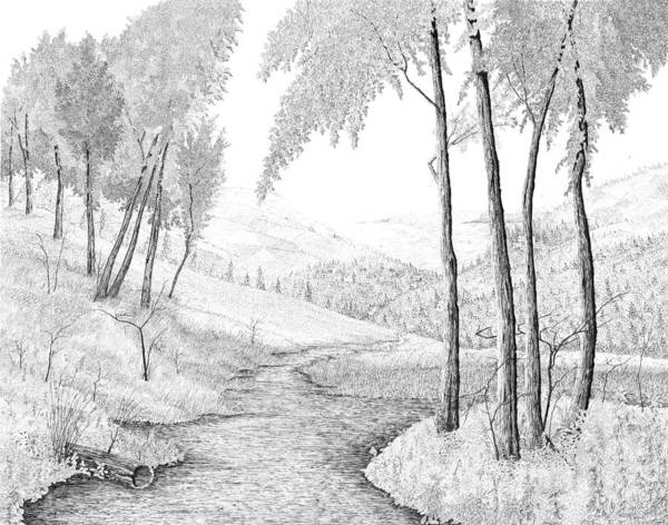 Drawing - The Stream by Carl Genovese