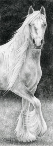 Equine Drawing - The Stuff Of Fairy Tales by Katherine Plumer