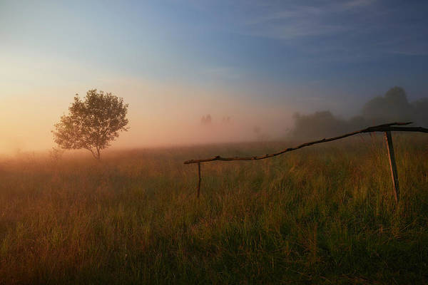 Fences Wall Art - Photograph - The Summer Field by Krzysztof Mierzejewski