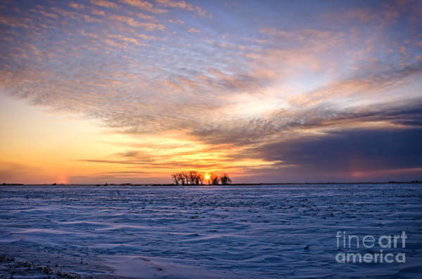 Evening Wall Art - Photograph - Beautiful Sunset In Saskatchewan At Winter Time. by Viktor Birkus