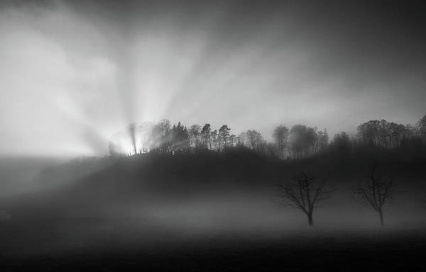 Wall Art - Photograph - The Sun In The Fog by Nic Keller