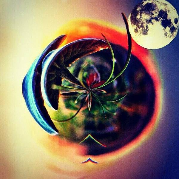Photograph - The Sun, The Moon & The Earth by Brandi Suarez