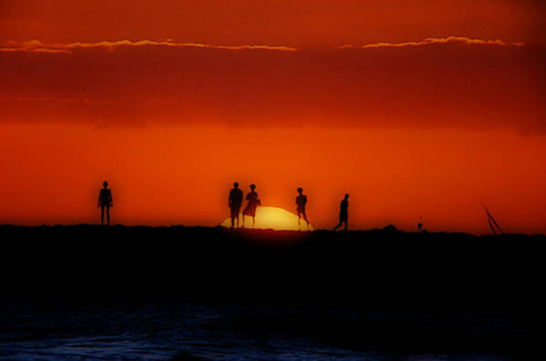 Photograph - The Sun Worshipers by Frank Vargo