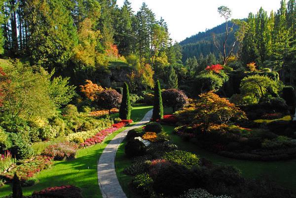 Photograph - The Sunken Garden by Lynn Bauer