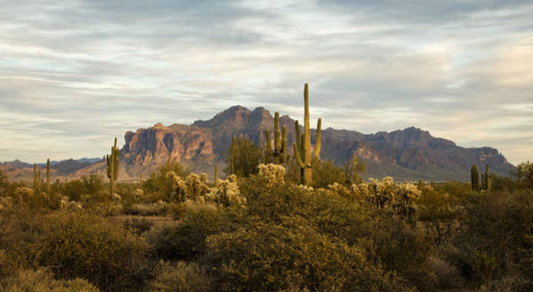 The Superstition Mountains Art Print