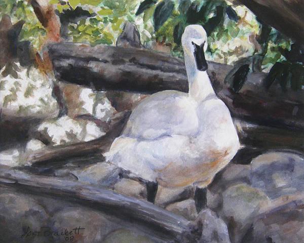 Trumpeter Swan Painting - The Swan by Lori Brackett