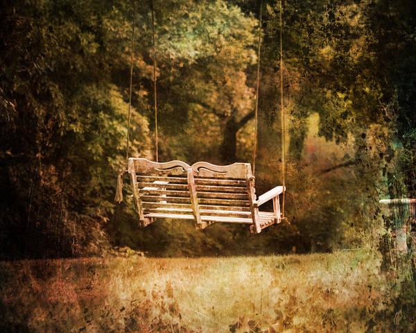 Photograph - The Swing by Jai Johnson