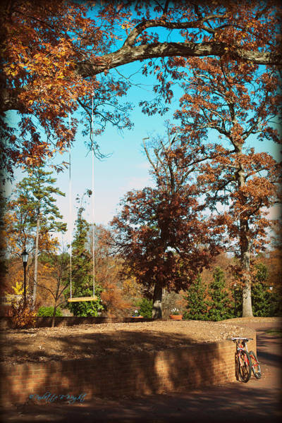 Photograph - The Swing With Red Bicycle - Davidson College by Paulette B Wright