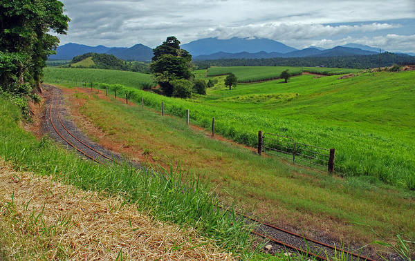 Atherton Tablelands Photograph - The Tablelands by Terry Everson
