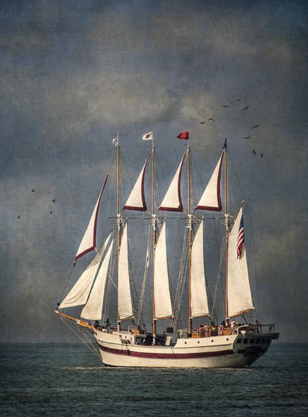 Photograph - The Tall Ship Windy by Dale Kincaid