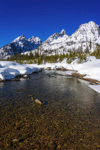 Untamed Wall Art - Photograph - The Tetons In Winter Above Cottonwood by Russ Bishop