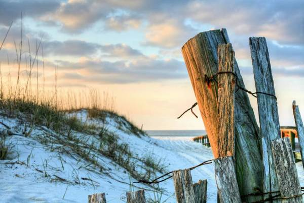 Photograph - The Texture Of Orange Beach by JC Findley