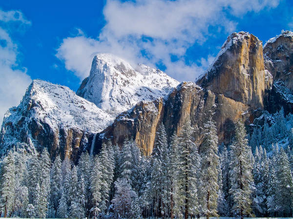 Wall Art - Photograph - Cathederal Rocks And Bridalveil by Bill Gallagher