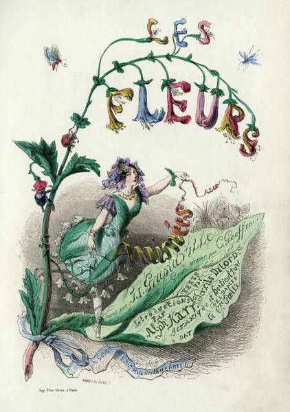 Wall Art - Drawing - The Title-page Of  'les Fleurs Animees' by Mary Evans Picture Library