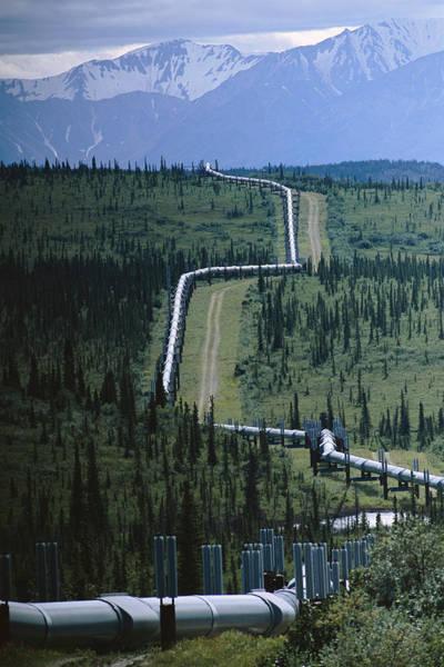 Wall Art - Photograph - The Trans-alaska Pipeline Cuts by Melissa Farlow