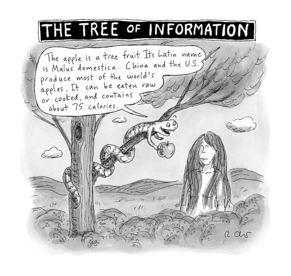 Apples Drawing - The Tree Of Information -- The Serpent Gives Eve by Roz Chast