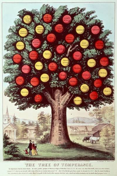 Virtue Photograph - The Tree Of Temperance, 1872 Colour Litho by N. Currier