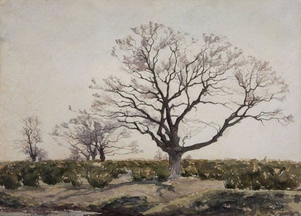 Wall Art - Painting - The Tree  by Henri Duhem