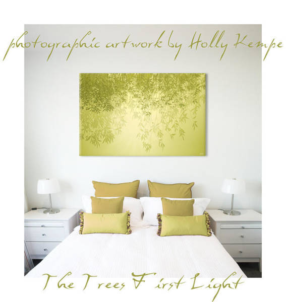 Wall Art - Photograph - The Trees First Light Wall Art by Holly Kempe